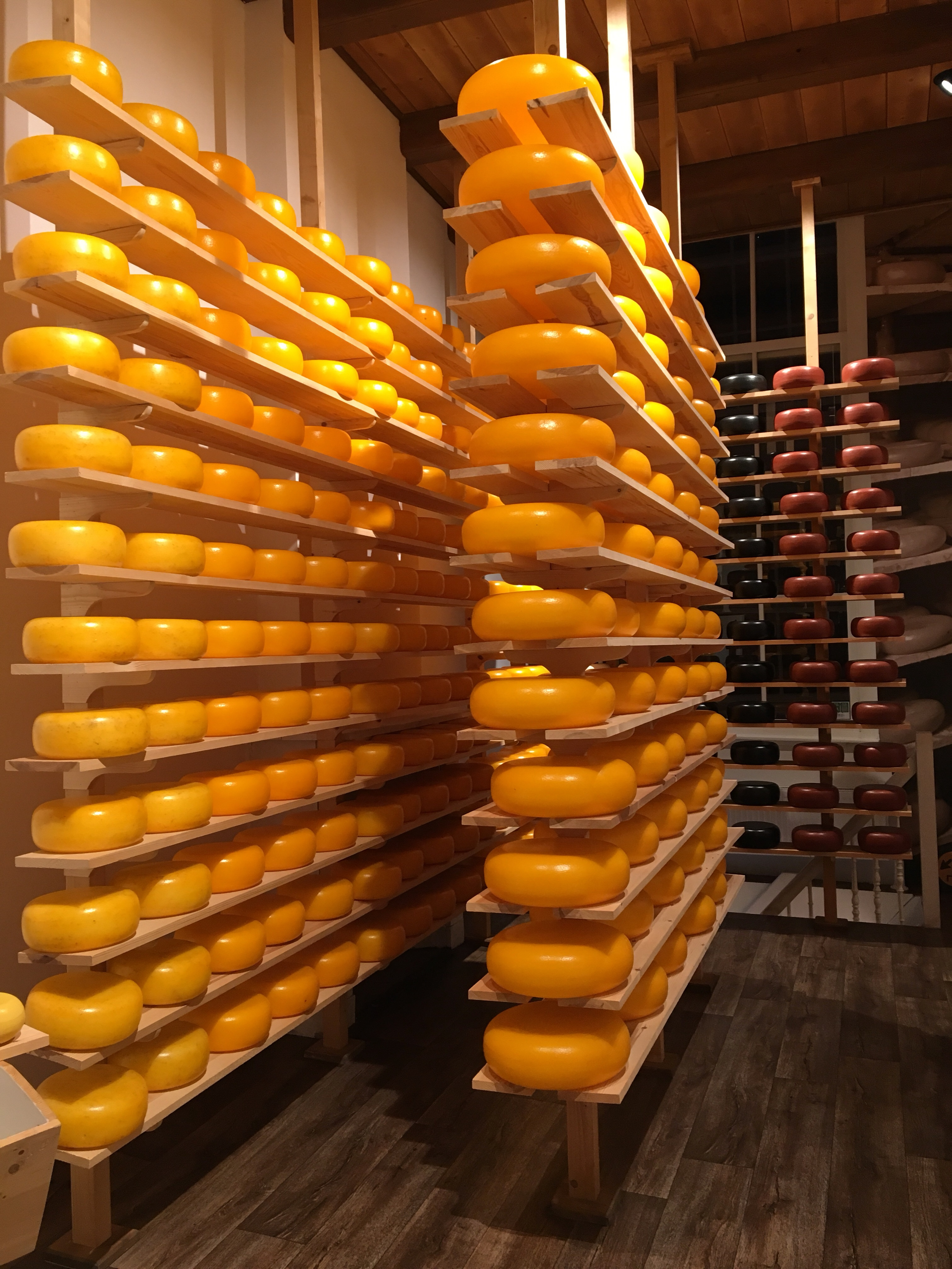 Cheese museum with hundreds of rolls of cheese on shelves