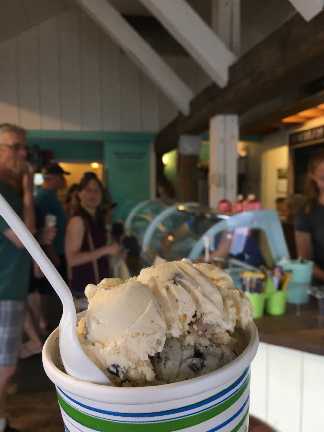 Stuff'd Ice Cream Bar in Lakefield Ontario