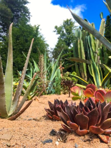 Halifax Public Gardens Botanical Gardens