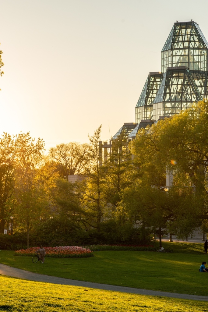 Golden hour in Major's Hill Park with the National Gallery building in the background