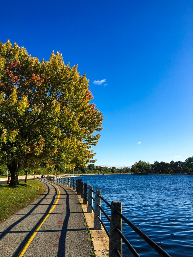 Rideau Canal and multi-use pathway during fall in Ottawa
