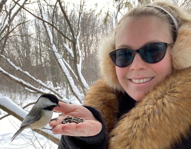 Feeding Chickadees from hand in NCC Greenbelt