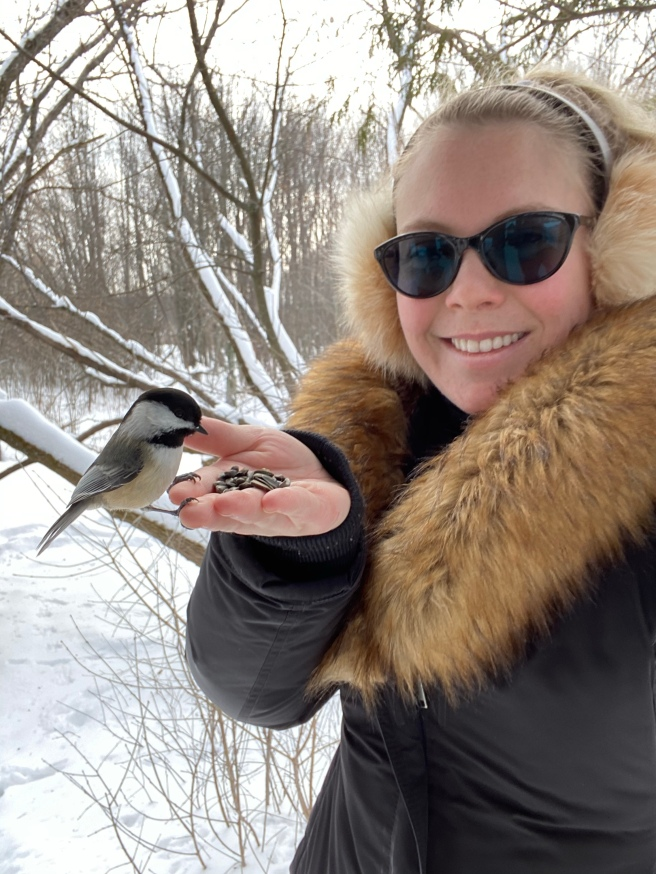 Woman in winter with sunflower seeds in her hand feeding a chickadee that is sitting on her hand