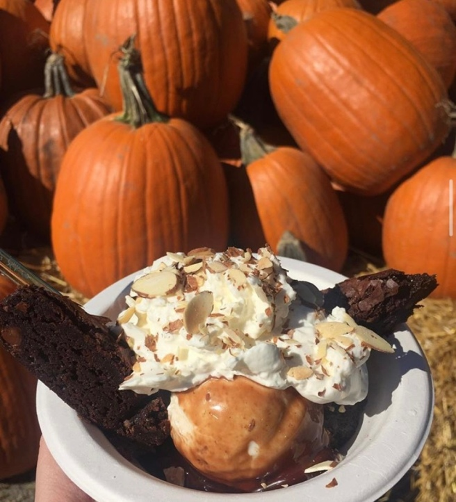 Ice cream and brownies and almonds pictured in front of pumpkins during the fall