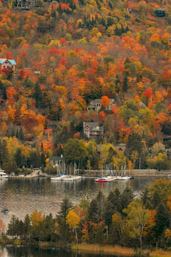 Fall foliage with cottages along the water in Mont Tremblant