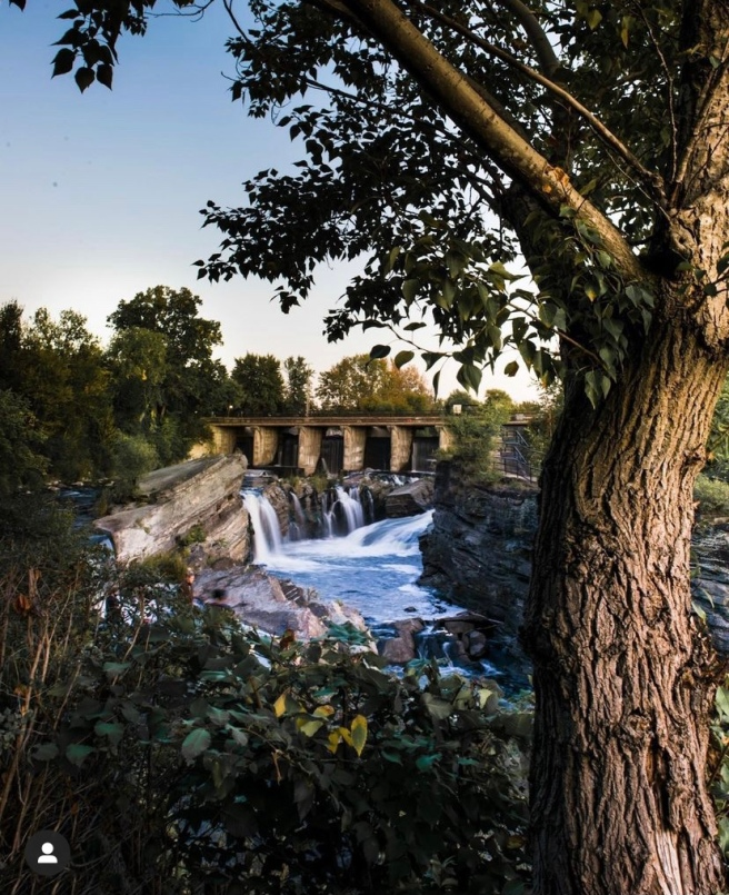 Waterfall underneath bridge with a tree in the foreground